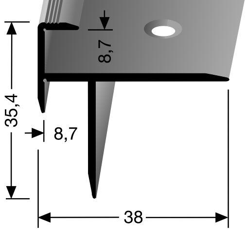 janser gmbh professionelle fussbodentechnik treppenkantenprofil f r laminat alu sand 270. Black Bedroom Furniture Sets. Home Design Ideas